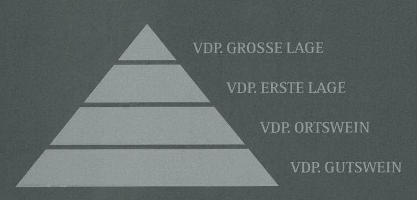 VDP Classification Pyramid (1)