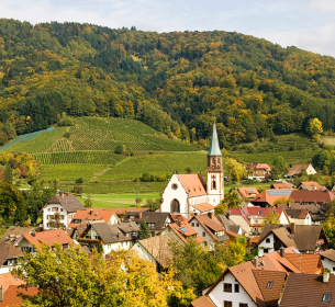 The idyllic townscape of the Kaiserstuhl